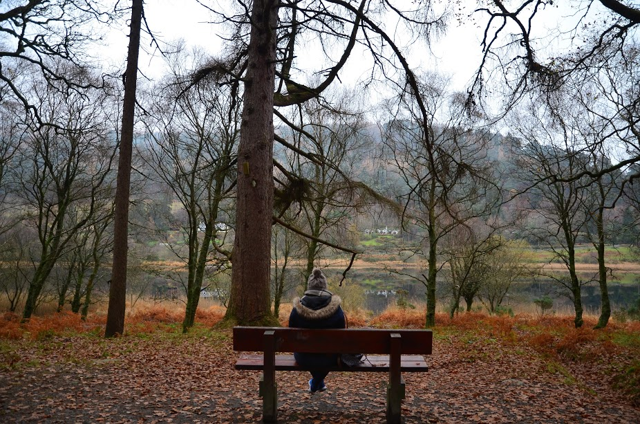 Glendalough Bench