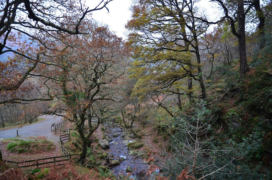 Glendalough Park