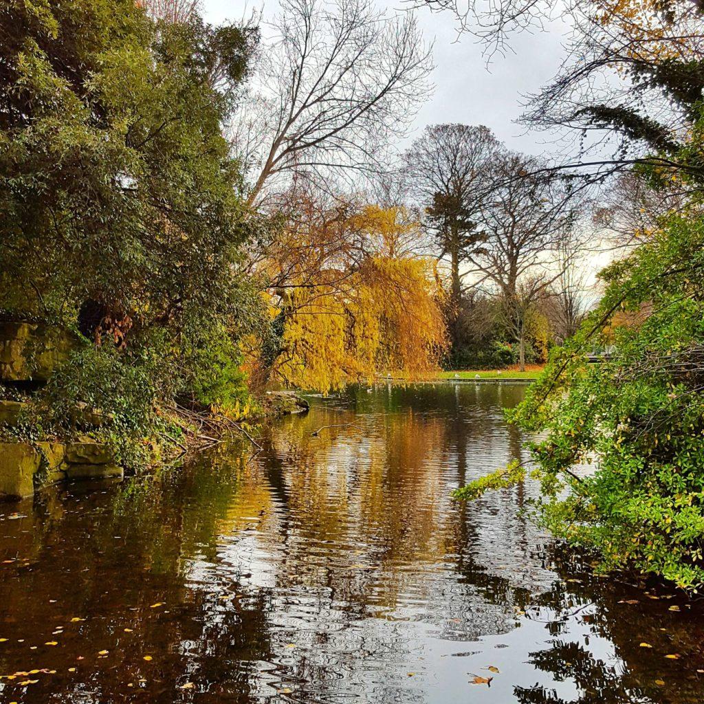 Natur Dublin
